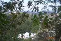 Vista panorâmica da regiao em outro ângulo